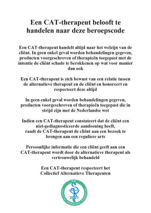 CAT-morele_beroepscode 2021